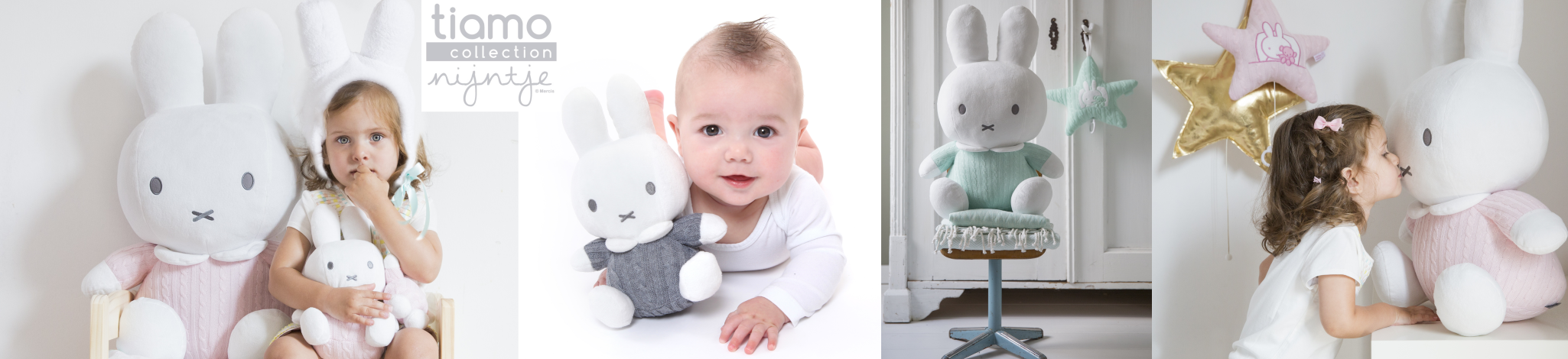 Rabbit Miffy Tiamo